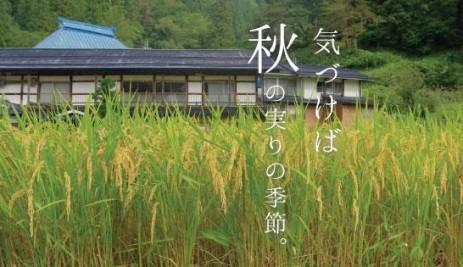 稲刈りイベントのお知らせ